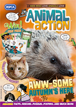 Animal action cover autumn 2019 © RSPCA